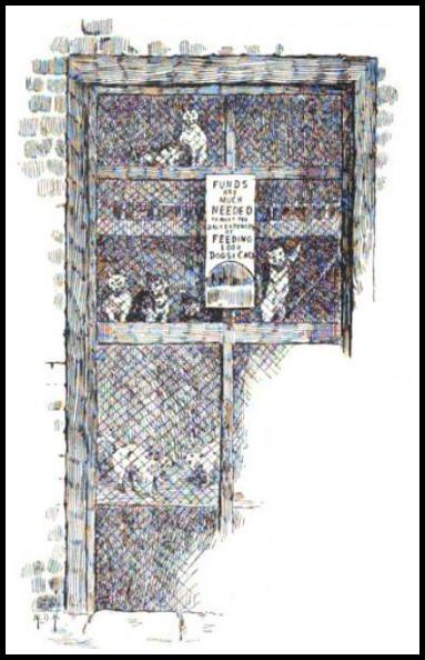 the battersea cats house strand magazine 1891