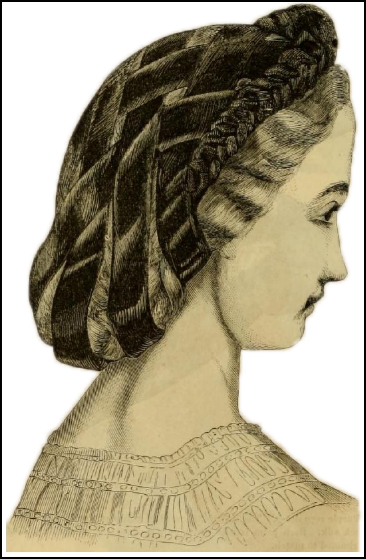 velvet woven hair net godeys ladys book february 18632