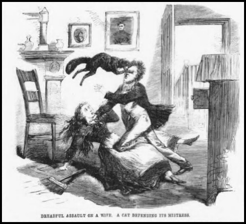 Cat Defending its Mistress Illustrated Police News July 6 1867