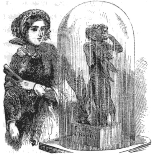 Feejee Mermaid Illustration from Sights in Boston and Suburbs by R. L. Midgley 1857.