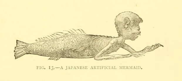 Japanese Artificial Mermaid from Sea fables explained by Henry Lee 1883 e1522078573668