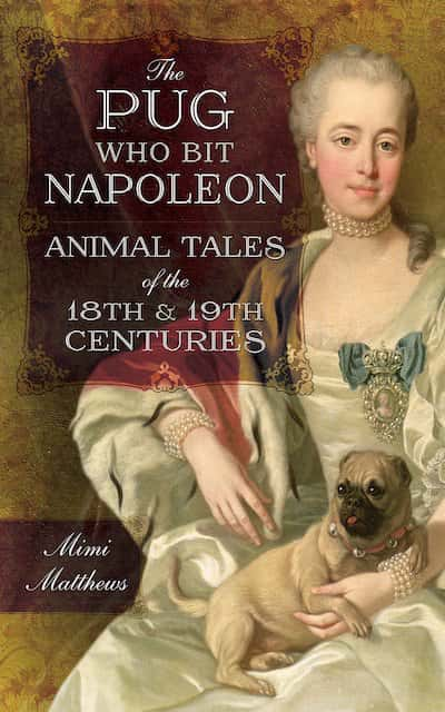 Book cover for The Pug Who Bit Napoleon by Mimi Matthews